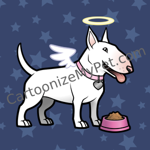 Angel English Bull Terrier with pink bowl on stars
