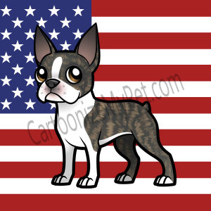 Here's the cartoon Boston Terrier I made at Cartoonize My Pet!